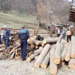 În zona Câmpeni s-au aplicat sancțiuni de peste 7.700 de lei pentru ilegalități silvice