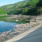 Pe apa lacului de la Mihoeşti gunoaiele plutesc de o lună şi jumătate!