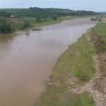 Sute de pești morți pe râul Arieş pe teritoriul fondului cinegetic 37 Turda
