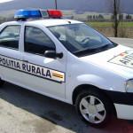 Șoferul unei autoutilitare a distrus o stație de autobuz în Sălciua și mai apoi a fugit de la locul accidentului