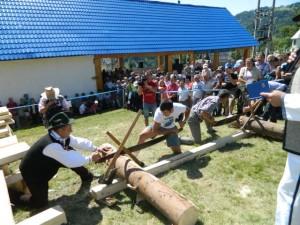 Targul-lemnarilor-2012