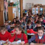 Subiecte simulare Bacalaureat 2014 (BAC), la limba română | campeniinfo.ro
