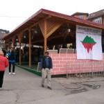 """Tabăra de pictură la Arieșeni sub genericul """"Agonie și extaz la Roșia Montană"""""""