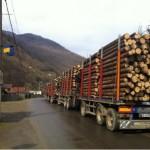 Peste 400 de moți au ieșit astăzi în stradă la Gârda de Sus în semn de protest împotriva exploatărilor masive de lemn din Apuseni
