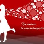 Mesaje de Valentine's day 2014. Ce declaraţii, urări, SMS-uri şi mesaje de dragoste puteţi trimite persoanei iubite | campeniinfo.ro