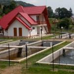 În comuna Vidra se construiește cea mai mare păstrăvărie din județul Alba