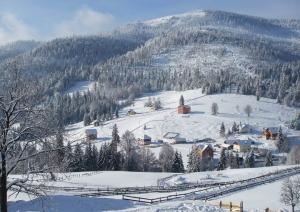 arieseni-iarna-2014
