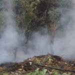 Incendiu de vegetație uscată, produs la Tomușești, lichidat de pompierii din Câmpeni