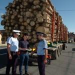 Șofer din Arad surprins în timp ce transporta aproape 13 metrii cubi de material lemnos fară documente legale, la Vadu Moților