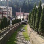La Câmpeni, râul Arieş este aproape de minimul istoric, iar Valea Caselor a secat!