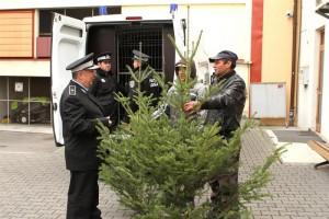 brazi-confiscati-politie-locala