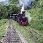 Mobilizare pe o rețea de socializare pentru a da o mână de ajutor la defrişarea fostei linii de cale ferată a Mocăniței