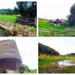 O dată pe an, satul Poieni, comuna Vidra, prinde din nou viață!