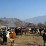 În comuna Sălciua reînvie tradiția unuia dintre cele mai mari târguri de animale din Apuseni, vechi de peste 100 de ani