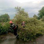 Trafic întrerupt pe DN1R, între Horea și Albac și pe DN 75, între Gârda și Arieșeni, după furtuna violentă din această după-amiază