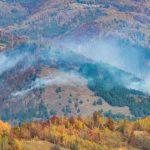 Potrivit ISU Alba, cauza probabilă a incediului care a mistuit circa 10 hectare de pădure la Sălciua este un foc lăsat nesupravegheat. Vezi filmul evenimentelor