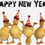 MESAJE SMS de Anul Nou 2018 haioase. Urări și Felicitări amuzante pe care le puteți transmite celor dragi | campeniinfo.ro