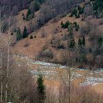 Mii de sticle din plastic plutesc pe apele umflate ale râului Arieș