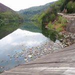 Gunoaiele au pus din nou stăpânire pe apa din lacul de acumulare al barajului de la Mihoești