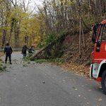 Un copac căzut pe carosabil si aluviunile aduse de un pârâu au blocat DN 75, între Vadu Moților și Albac